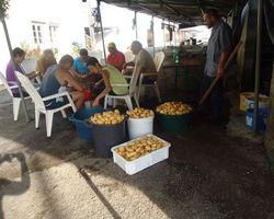 La Ferme des Blancs - Colombier-en-Brionnais - Nos fermes gourmandes